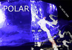 POLAR_flyerfront.jpg: 482x340, 58k (March 09, 2009, at 01:54 AM)